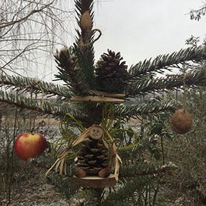 Boldog Karácsonyfát! :)